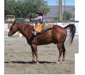Little-girl-horse