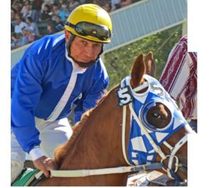 Jockey-circle