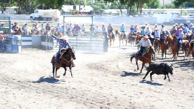 Elko County Fair
