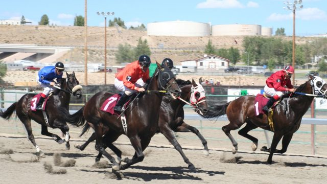 Elko County Fair Horse Races
